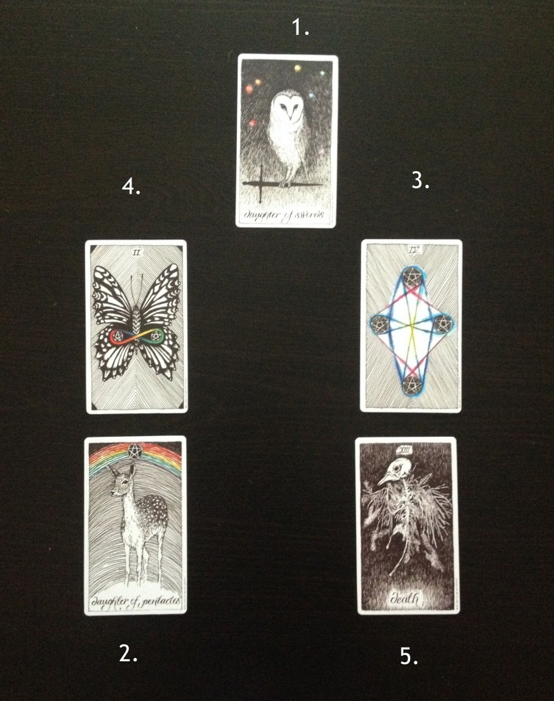 Wild Unknown Tarot Reading Yule